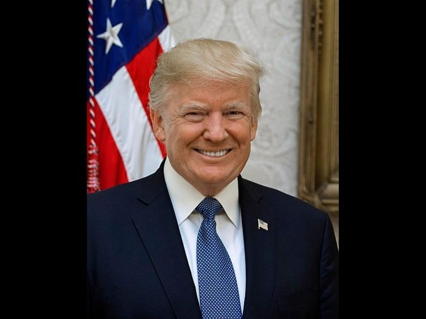 The above image is the official portrait of former-President Donald Trump in 2017.