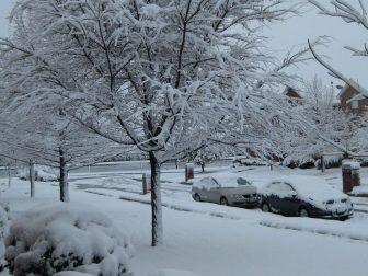 Texas Snow Storm Feb 2010