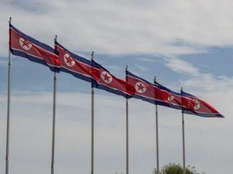 Six North Korean Flags