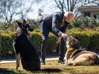 President Joe Biden plays with the Biden family dogs Champ and Major Wednesday, Feb. 24, 2021, in the Rose Garden of the White House. (Courtesy Photo by Ana Isabel Martinez Chamorro)