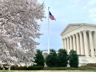 Cherry blossoms, Supreme Court