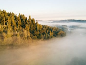 A drone photo above the morning fog. Carnation, WA